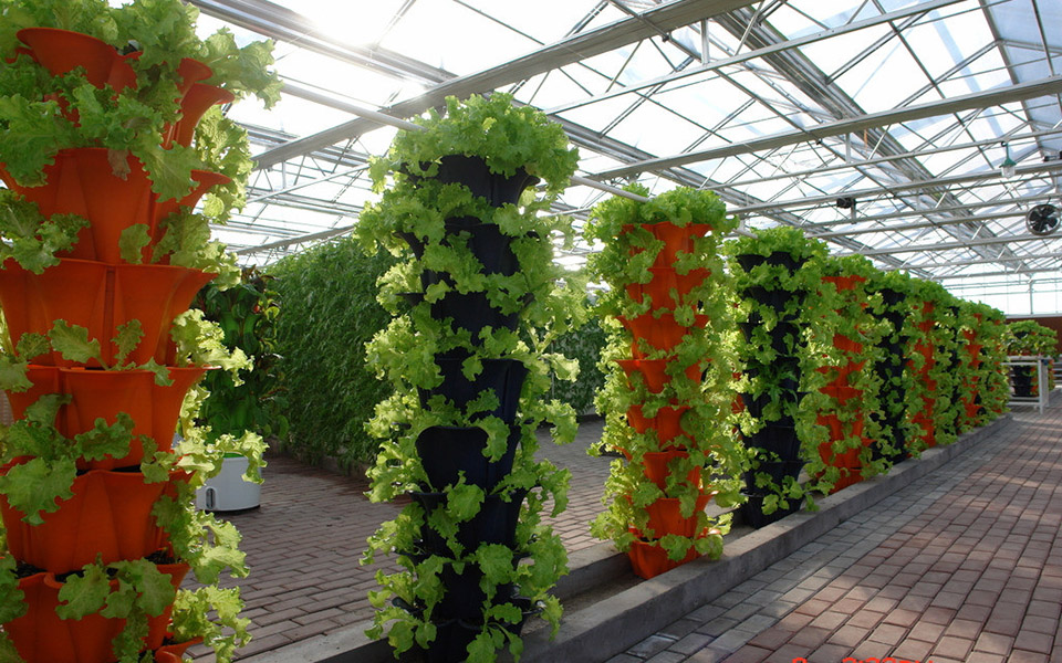 智能农业-寿光智能蔬菜大棚